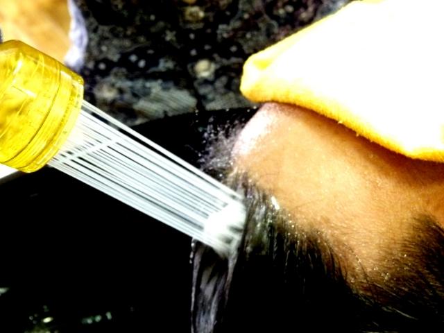 男性用育毛シャンプー:油性肌、乾燥肌、敏感肌別おすすめ育毛シャンプー